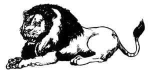 La grande droguerie de Lion